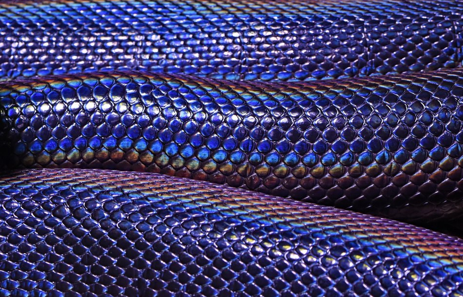 Banner of snakeskin iridescent shine
