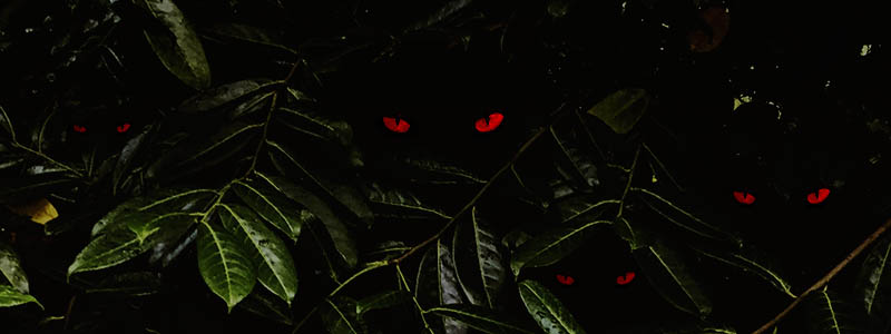 Banner for Horror Movie Plants