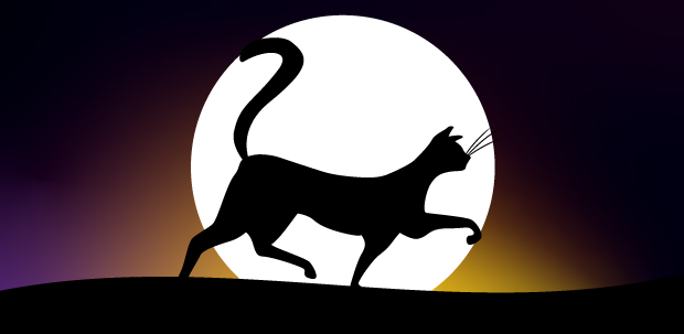 Banner of a black cat at night illustrated by Under The Moonlight